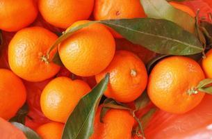 nourriture aux fruits de mandarine photo