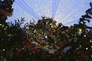 arbre de noël décoré photo