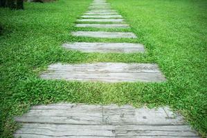 chemin de pierre dans le parc avec fond d'herbe verte. photo