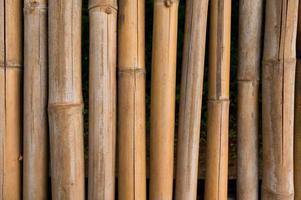 texture de clôture en bambou avec fond de motifs naturels photo