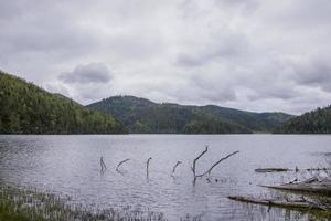 vue sur la nature du lac dans le parc national de pudacuo shangri la, yunnan chine photo