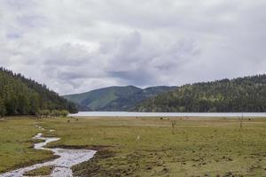 rivière lac de montagne dans le parc national de pudacuo shangri la yunnan chinav photo