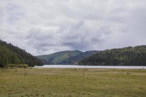 lac de montagne dans le parc national de pudacuo à shangri la, yunnan chinav photo