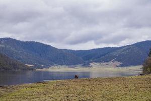 Côté lac de cheval dans le parc national de pudacuo à shangri la yunnan chine photo