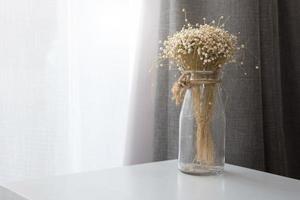 fleur sèche dans une bouteille de vase en verre transparent au salon photo