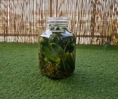 concombres marinés dans un bocal fermé debout sur le vert photo