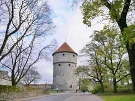 tour d'artillerie de six étages dans le centre historique de tallinn, estonie photo