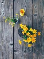 Champ de fleurs jaunes dans des vases colorés vue de dessus photo