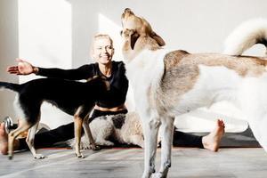 heureuse jeune femme blonde avec ses chiens à la salle de gym à domicile photo