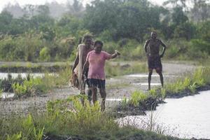 sorong, indonésie 2021- pêcheurs d'étang photo