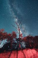 voie lactée et étoiles de nuit dans les champs photo