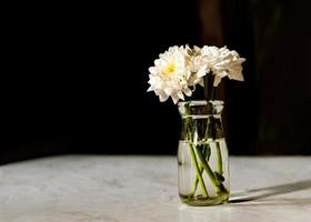 bouquet de fleurs blanches dans un vase sur table en bois photo