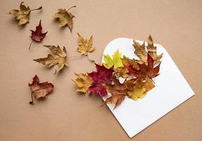 enveloppe avec des feuilles séchées sur fond marron pastel photo
