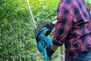 jardinier tenant un taille-haie électrique pour couper la cime des arbres photo