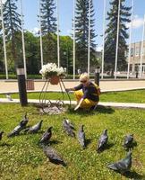 la femme nourrit les pigeons. les oiseaux mangent des miettes de pain photo
