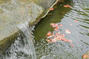 détails de la belle cascade dans les jardins botaniques de perdana. photo
