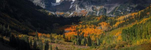 Feuillage d'automne à la zone de loisirs Maroon Bells photo