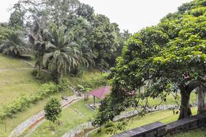 vue d'en haut sur le parc des cerfs de taman rusa, en malaisie. photo