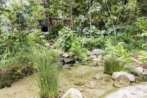 bel étang de jardin au milieu de la ville de kuala lumpur, en malaisie. photo