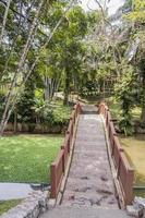 pont brun dans les jardins botaniques de perdana à kuala lumpur, malaisie photo