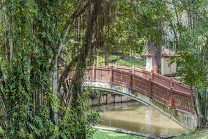 Pont sur la rivière tasik perdana dans les jardins botaniques perdana à Kuala Lumpur, Malaisie photo