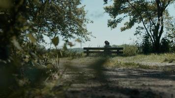 femme assise sur un banc en bois dans le pays lisant un livre photo