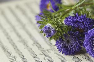 gros plan de fleurs bleues et notes de musique photo