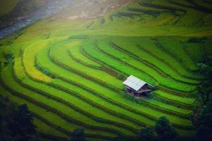 rizières en terrasses avec pavillon en bois au lever du soleil photo