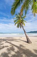 plage de phuket patong plage d'été photo