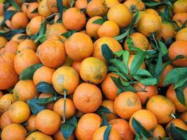 oranges au marché photo