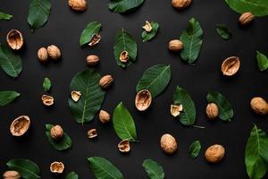 coquille de noix et feuilles vertes fraîches dispersées sur un fond noir. photo