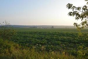 panorama de la région dans le village photo
