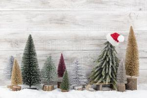 arbre de Noël sur fond en bois. photo
