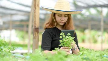 une femme au chapeau tenant une tablette prenant des photos de légumes à la main dans le jardin biologique.