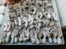 seiche crue fraîche. calmar cru avec de la glace dans l'étal du marché de fruits de mer photo