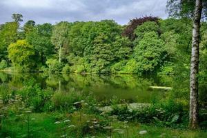 beau paysage de feuillage d'arbres et de l'étang à poissons dans la région de la maison harewood trust dans le west yorkshire au royaume-uni photo