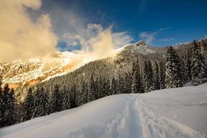 contrastes des lumières du coucher du soleil dans le paysage d'hiver par la neige dans les montagnes photo