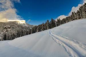 suivre un sentier en montée dans la neige avec ski et peaux de phoque photo