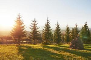 beau paysage de lever de soleil d'automne dans les montagnes des carpates, voyage en europe, ouest de l'ukraine, parc national des carpates, monde merveilleux, fond de paysage de papier peint photo