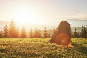 meule de foin au coucher du soleil. prairie, morceau de prairie, en particulier celui utilisé pour le foin. montagnes des carpates, ukraine photo