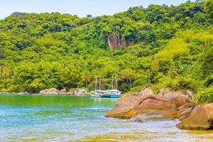 mangrove et plage de pouso sur l'île tropicale ilha grande brésil. photo