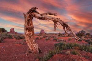 magnifique paysage de la vallée des monuments photo
