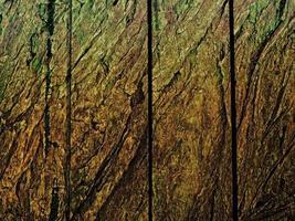 texture bois brun foncé photo