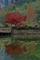 paysage à l'intérieur du parc national de zhangjiajie chine photo