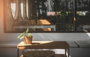 plante en pot sur la table avec la lumière du soleil. photo