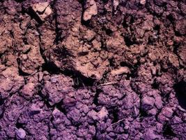 texture de la terre violette photo