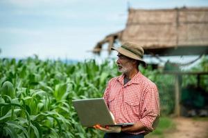 agriculteurs et leur utilisation de la technologie dans la culture du maïs. photo