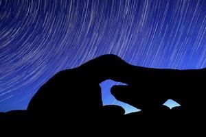 Le sentier des étoiles nocturnes sillonne les rochers du parc joshua tree photo