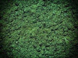 texture du sol de l'eau verte photo