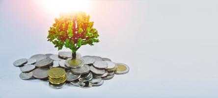 économiser de l'argent, investissement de l'argent des entreprises photo